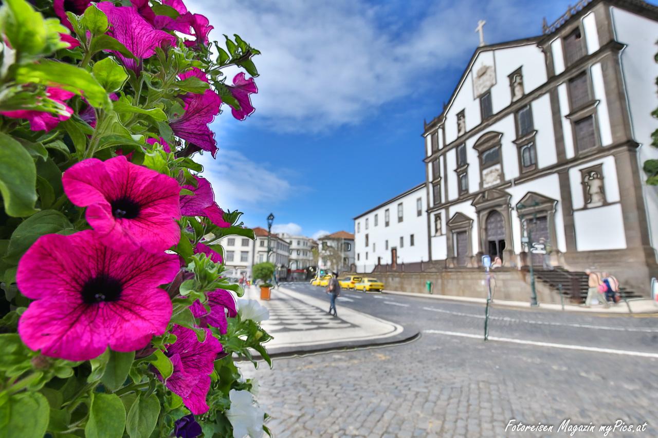 Funchal Madeira Reisetipps Sehenswurdigkeiten Reisemagazin