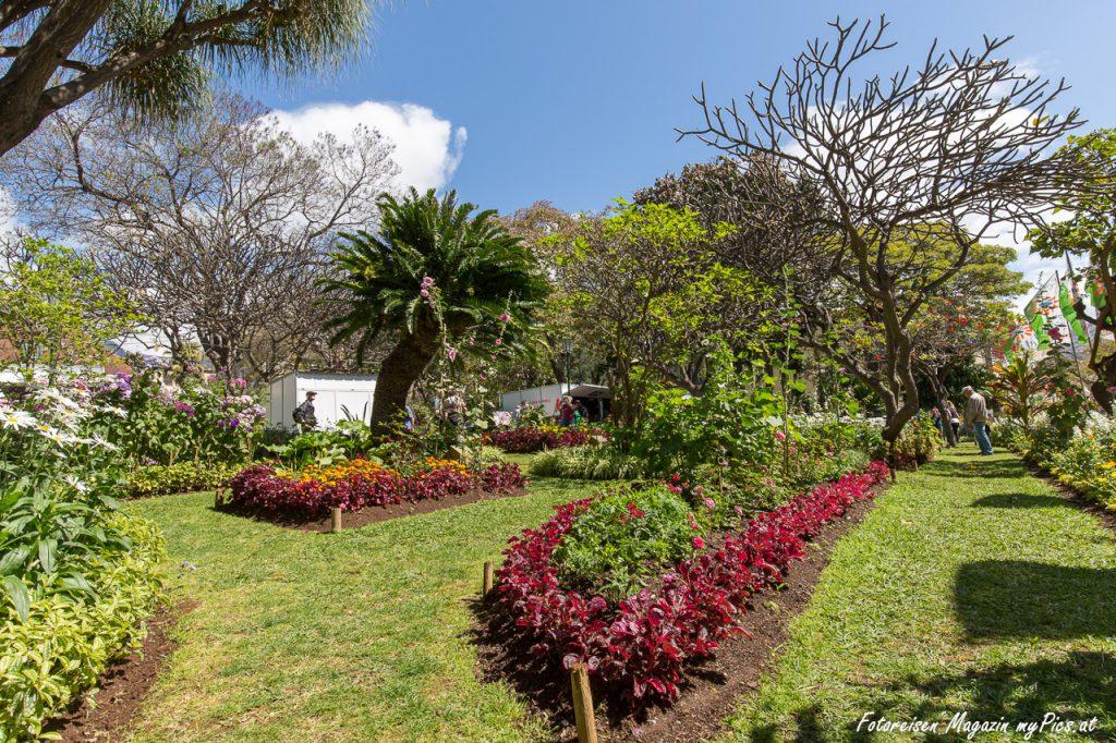 Jardim Municipal Parque in Funchal