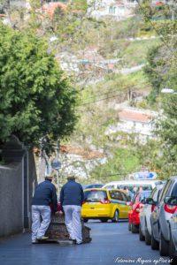 Korbfahrt Funchal