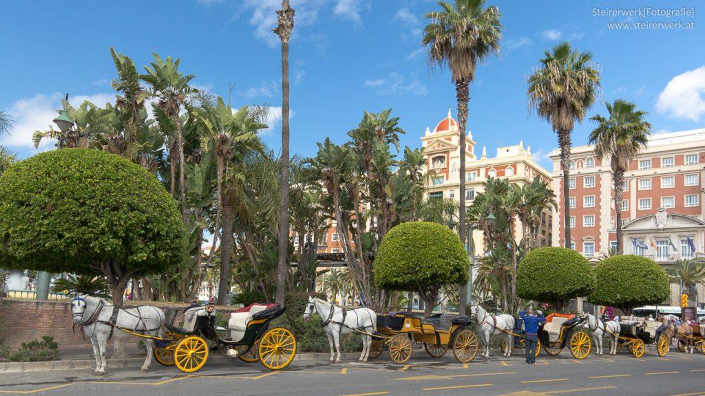 Malaga Pferdekutschen