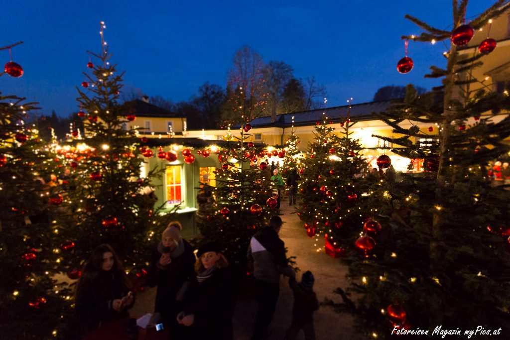 Weihnachtsbäume Schloss Hellbrunn